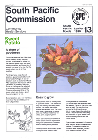 Sweet potato: a store of goodness
