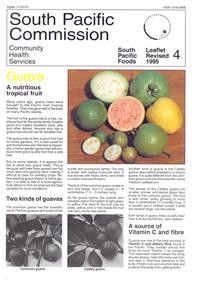 Guava: a nutritious tropical fruit