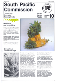 Pineapple: delicious and refreshing
