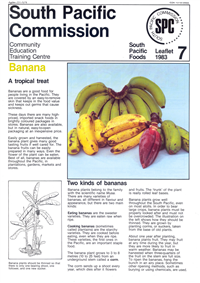 Banana: a tropical treat